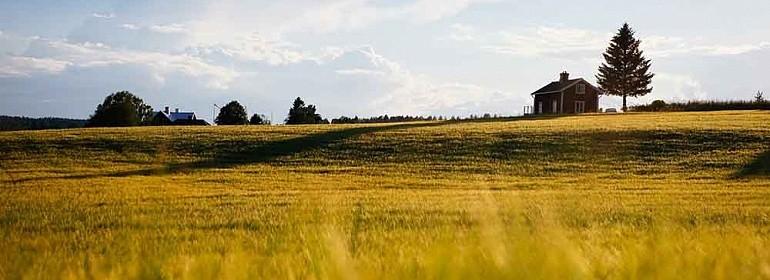 Стоимость участка земли не берется врасходы по УСН