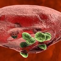 Лишний килограмм - минус жизнь. Избыточный вес приводит к раку?