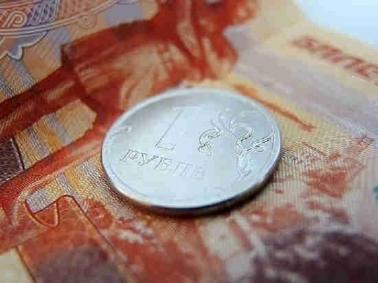 В Госдуме предложили отнимать у не платящих налоги самозанятых весь доход