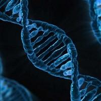 Ученые нашли маркер эффективности иммунотерапии