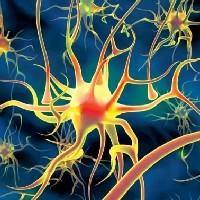 Медные внутриматочные спирали защищают от цервикального рака