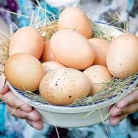 Яйца снижают риск развития диабета 2 типа