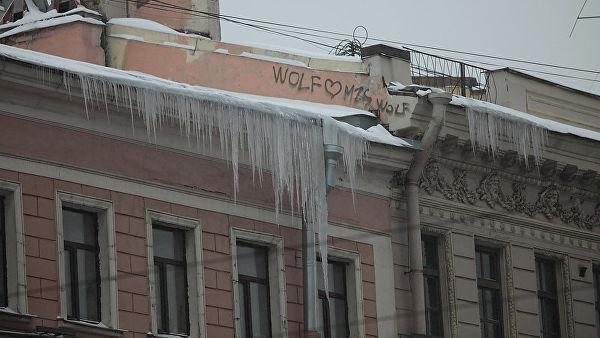 Проректор вуза в Петербурге задержан после гибели студента от падения льда