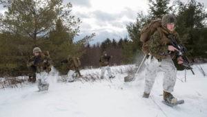 Газ или Донбасс: что Зеленский делал в Эстонии