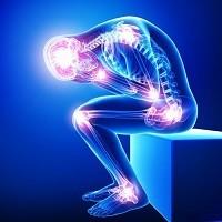 Эндокринные деструкторы влияют на ДНК
