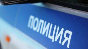 Десять человек устроили потасовку в кафе на юго-востоке Москвы