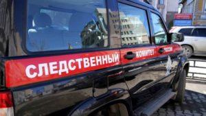 Опрос: треть российских школьников проведут летние каникулы в деревне либо на даче