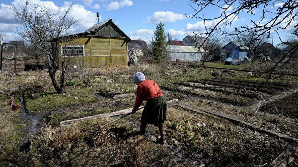 Кадастровая палата запустит всероссийскую горячую линию по дачным вопросам