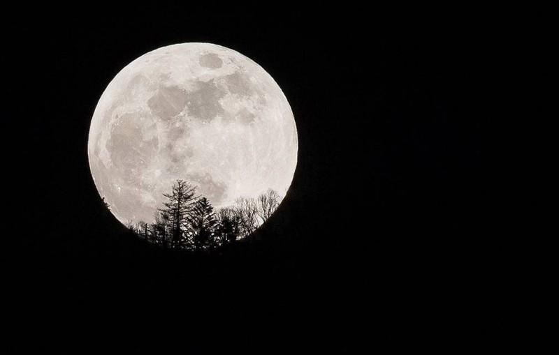 """США выбрали для своей новой лунной программы название """"Артемида"""""""