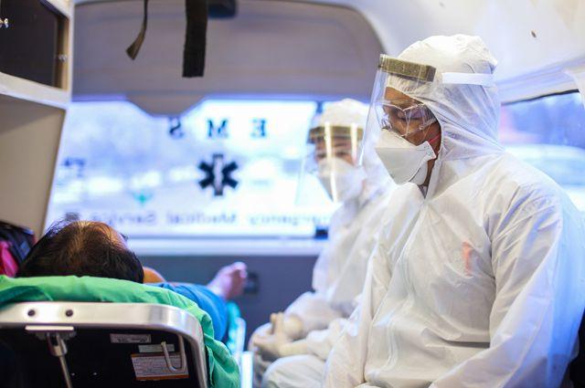 Возрождение Эболы. На Россию снова движется опасная лихорадка?