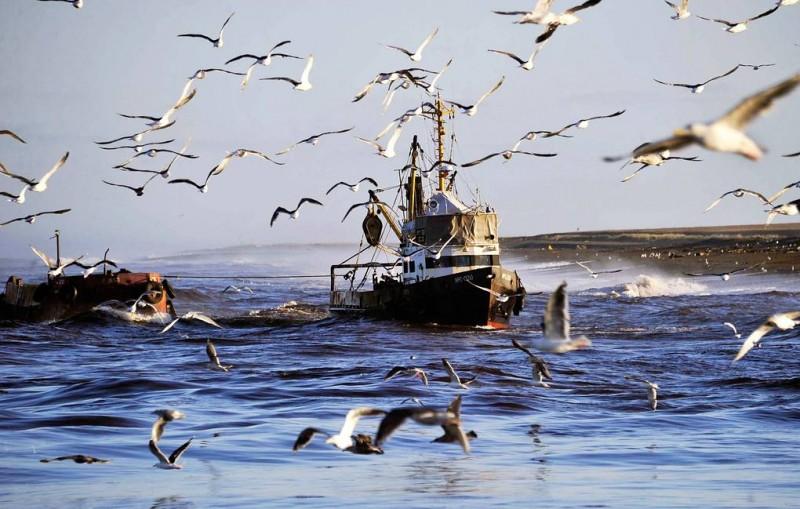 Экипажу задержанного в КНДР российского судна доставили воду и продукты питания