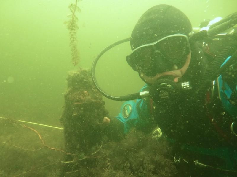ВБраславском районе под водой нашли останки древнего моста. Предположительно, ему 500 лет