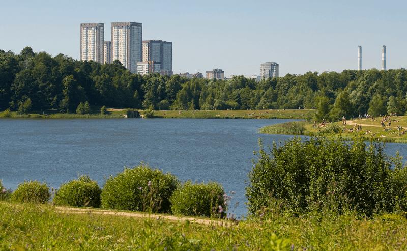 ВИзмайлово выступают против застройки леса, подугрозой все парки Москвы. Что происходит?