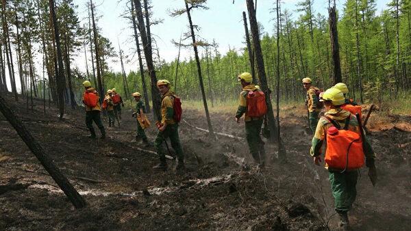 Площадь пожаров в лесах Иркутской области сократилась на 50 тысяч гектаров