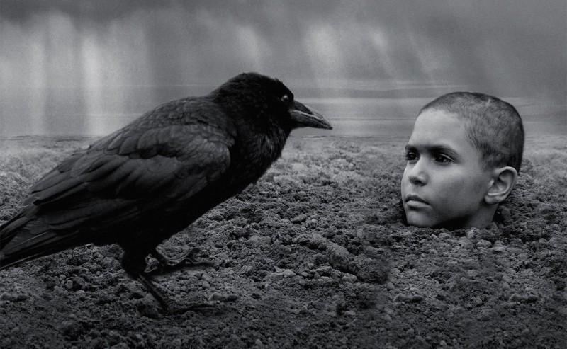 Иди инесмотри: «Раскрашенная птица»— самый отталкивающий фильм Венецианского фестиваля