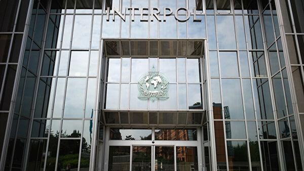 Операция Интерпола выявила подозреваемых в терроризме в шести странах
