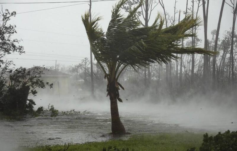 """На Багамах пять человек погибли из-за урагана """"Дориан"""""""
