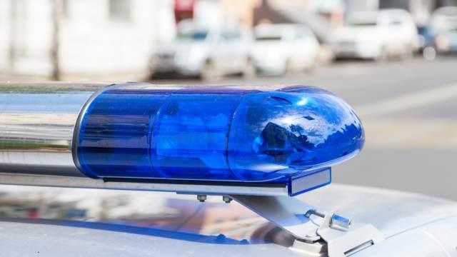 Зарезали и задушили: изуродованное тело женщины нашли в Домодедове