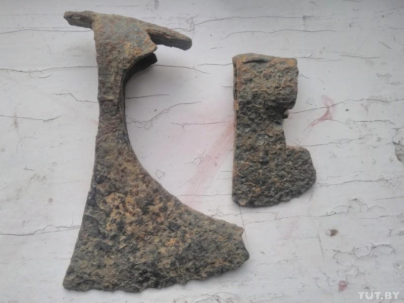 Под Бобруйском обнаружены новые артефакты, претендующие насенсацию