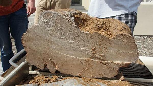 Ученые нашли причину краха древнейшего государства мира