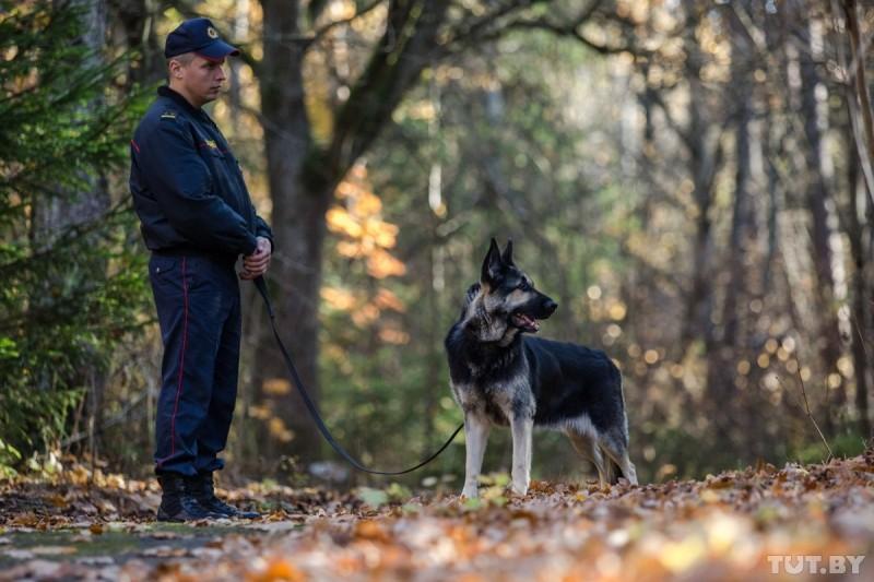 Собаки-спецназовцы искали наркотики ивзрывчатку наперегонки. Посмотрите, как это было