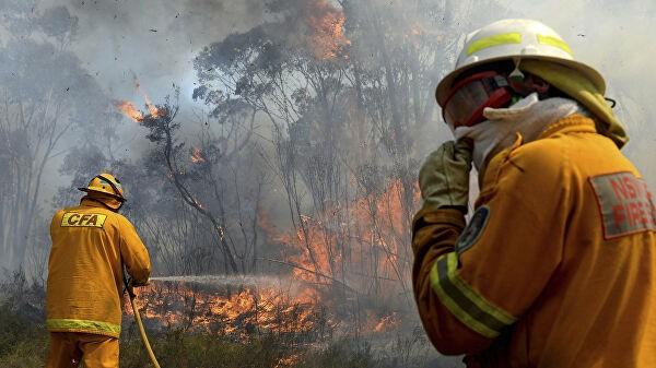В Австралии два человека погибли из-за лесных пожаров