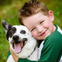 Собаки положительно влияют на психическое здоровье